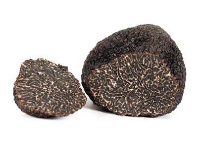 Black Perigord Truffle