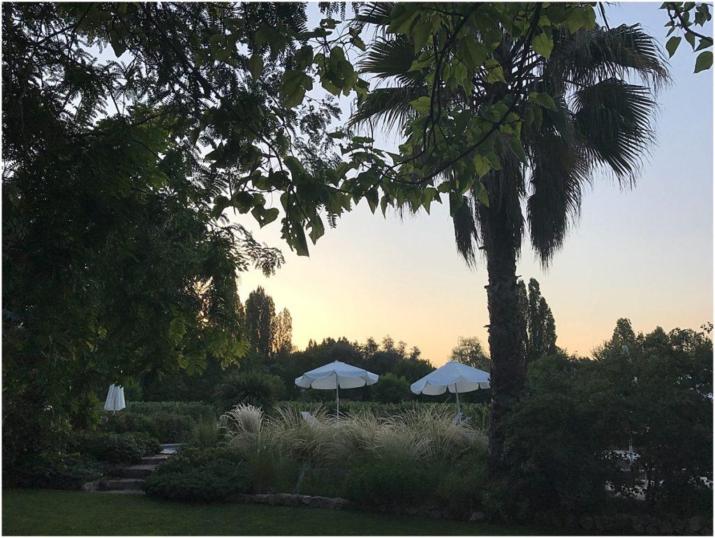 Finca Adalgisa Sunset