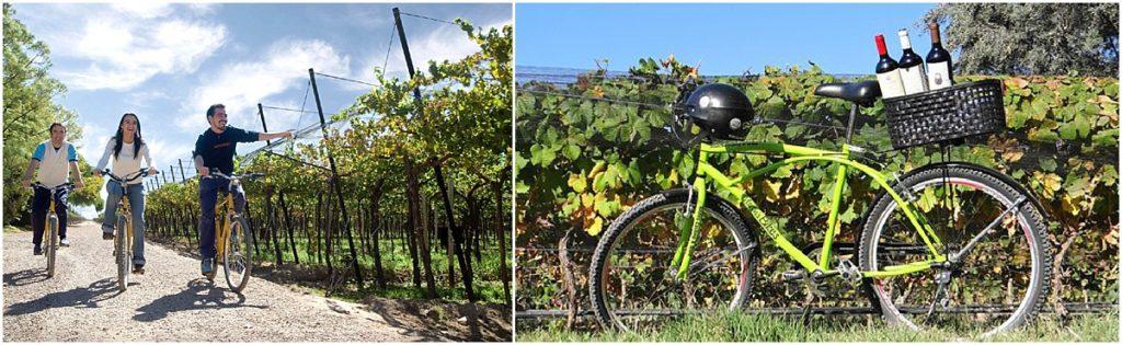 Bike Mendoza