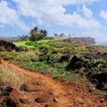Hawaii Feature